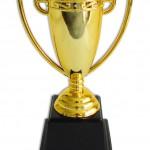 D1-Pokal